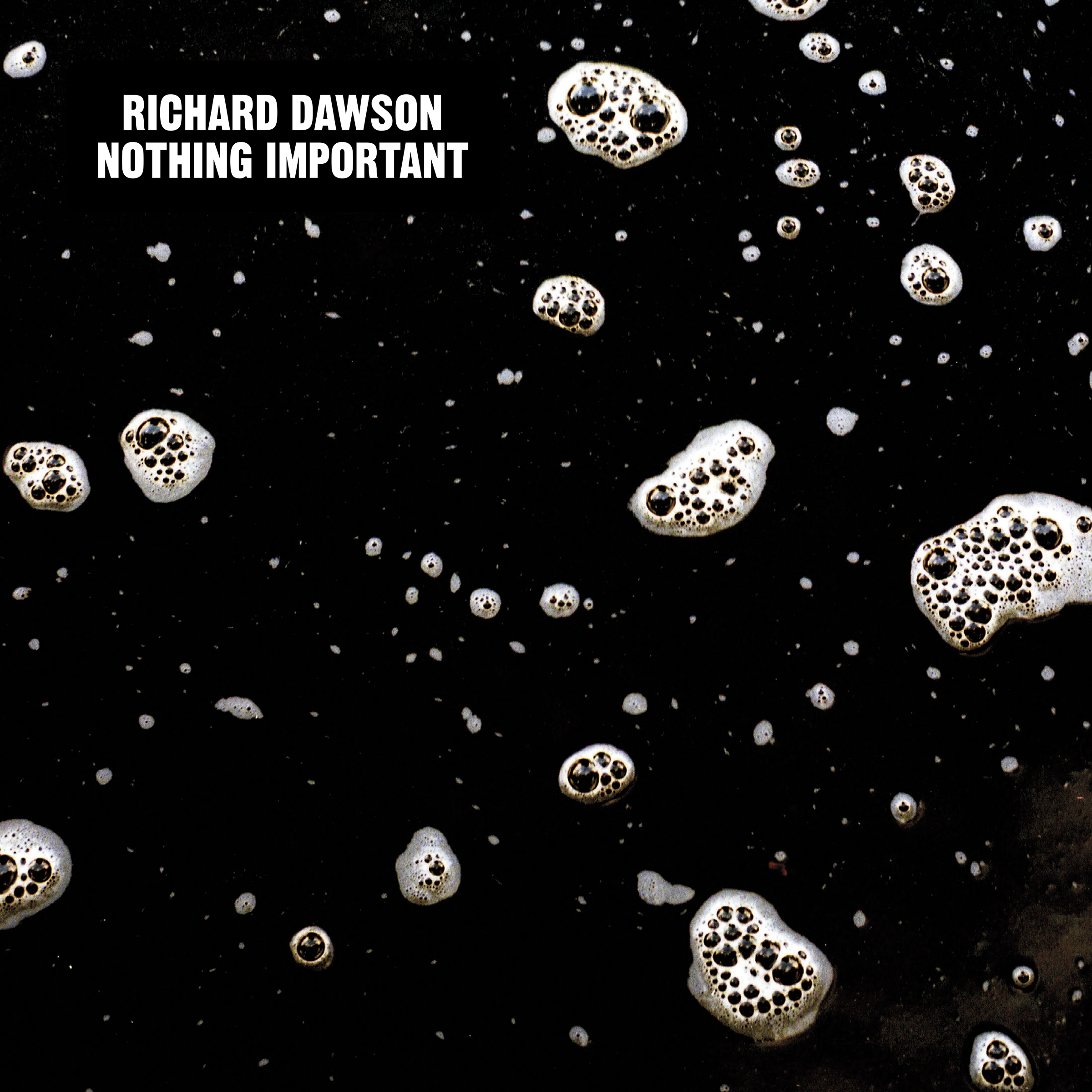 Richard Dawson - Nothing Important - 300dpi